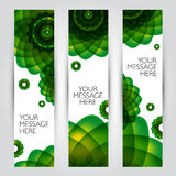 Vector banners set. Floral and plant backgrounds Royalty Free Stock Photos