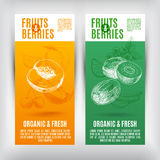 Vector banners set  with hand drawn fruits .Fruits Royalty Free Stock Images