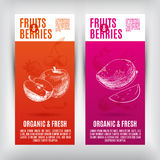 Vector banners set  with hand drawn fruits .Fruits Stock Photos