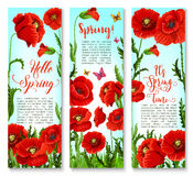 Vector banners of spring poppy flowers and quotes Royalty Free Stock Image