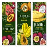 Vector banners of tropical exotic fruit juice sketch. Exotic tropical fruits banners for farm market or fresh juice. Vector sketch mango, guava or durian and Stock Photo