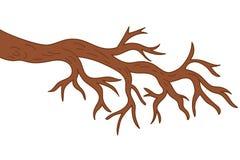 Vector Bare Tree Branch. Tree Branch Vector Illustration Royalty Free Stock Image