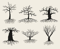 Vector bare tree silhouettes with roots Royalty Free Stock Photo