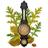 Vector barometer with leaves Royalty Free Stock Image