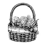 Vector basket with vegetables Stock Photos