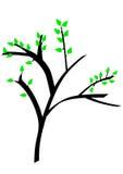 Vector Baum Lizenzfreie Stockbilder