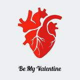 Vector be my valentine human heart Royalty Free Stock Photography