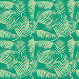 Vector beach seamless pattern with tropical palm tree leaves Stock Images