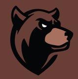 Vector bear head Royalty Free Stock Image