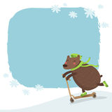 Vector bear riding a scooter, winter background Royalty Free Stock Images