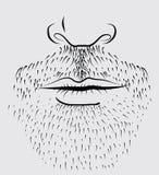Vector beard of man Stock Photos
