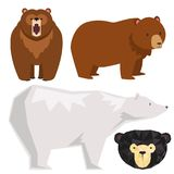 Vector bears different style funny happy animals cartoon predator cute bear character illustration.  Stock Photos