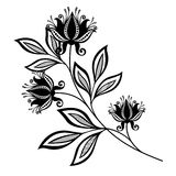 Vector Beautiful Abstract Black Flower Stock Photos