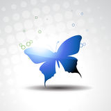 Vector beautiful butterfly Royalty Free Stock Photo