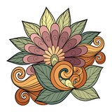 Vector Beautiful Colored Contour Flower Royalty Free Stock Images