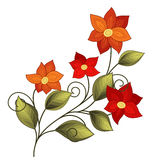 Vector Beautiful Colored Contour Flower. Floral Design Element Stock Images
