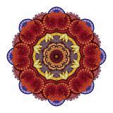 Vector Beautiful Deco Colored contour Mandala Stock Images