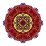 Vector Beautiful Deco Colored contour Mandala Stock Images