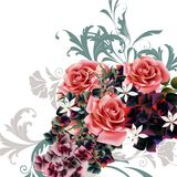 Vector Beautiful illustration with roses. Beautiful vector illustration with roses Stock Photography