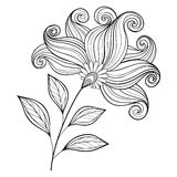 Vector Beautiful Monochrome Contour Flower Royalty Free Stock Image