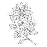 Vector Beautiful Monochrome Contour Flower Royalty Free Stock Photo