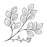 Vector Beautiful Monochrome Contour Leaf Stock Photography