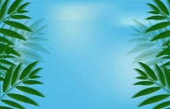 Vector beautiful nature background banner on blue sky. Background with clouds with green palm tree branches with summer leaves vector illustration