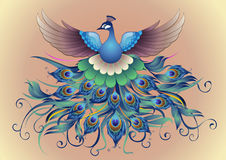 Vector, Beautiful Peacock in decorative style Stock Photos