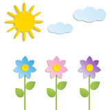 Vector - Beautiful Spring Flowers.  Royalty Free Stock Photos