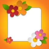 Beautiful Spring Flowers Orange Background Stock Photos
