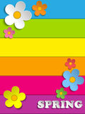 Beautiful Spring Flowers Rainbow Background Stock Image