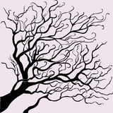 Vector beautiful tree. For your design Stock Image