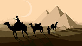 Vector bedouin caravan camels against over pyramids. Stock Photos