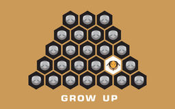 Vector of Bee grow up concept background. Vector of Bee,grow up concept background,vector,illustration,bee larvae,beehive Stock Photo