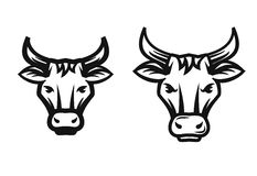 Vector beef head Royalty Free Stock Photography