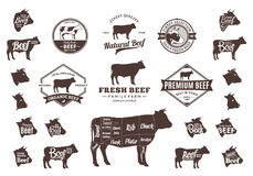 Vector Beef Logo, Icons, Charts and Design Elements. Set of beef logo. Butchery labels with sample text. Beef design elements, bull and cow icons and silhouettes Stock Photo