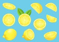 Vector beeld met geïsoleerdei citroenen Stock Foto's