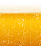 Vector beer background Stock Images