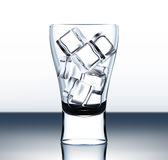 Vector beer glass with ice Royalty Free Stock Photography