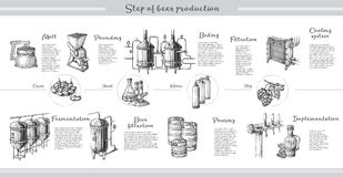 Vector beer infographics with illustrations of brewery process. Ale producing design. Hand sketched lager production scheme stock illustration