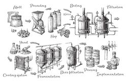Free Vector Beer Infographics With Illustrations Of Brewery Process. Stock Image - 115352061