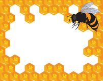 The vector bees and honeycomb with honey Royalty Free Stock Photo