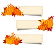 Vector beige banners with orange pumpkins and autumn leaves. Royalty Free Stock Photo