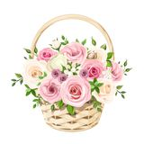 Basket with pink and white roses. Vector illustration. Vector beige basket with pink and white roses isolated on a white background Royalty Free Stock Photos