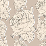 Vector Beige Vintage Roses Fabric Retro Repeating Seamless Pattern Hand Drawn In Botanical Style. Stock Images