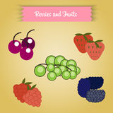 Vector berries and fruits Stock Photo