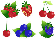 Vector-berry Royalty Free Stock Photography