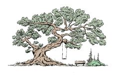 Big old tree vector illustration