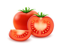 Vector Big Ripe Red Fresh Cut Whole Tomato Close up on White Background royalty free illustration