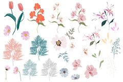 Vector Big Set botanic elements - wildflowers, herbs, leaf. collection garden and wild foliage, flowers,. Branches. illustration isolated on white background stock illustration